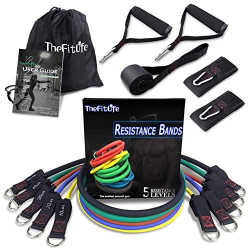TheFitLife 150lbs Elastique Musculation - BandeElastiqueFitness de...