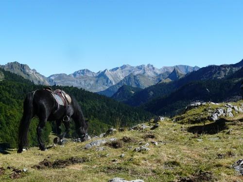 Préparation physique équitation - randonnée Pyrénées 4