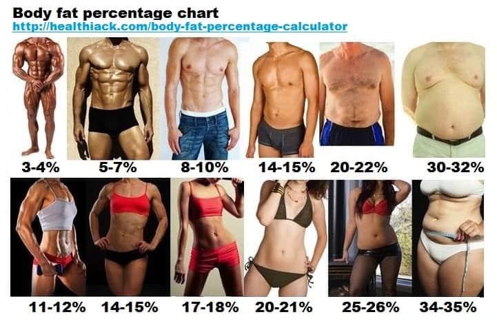 Calcul IMC et indice de masse grasse facile