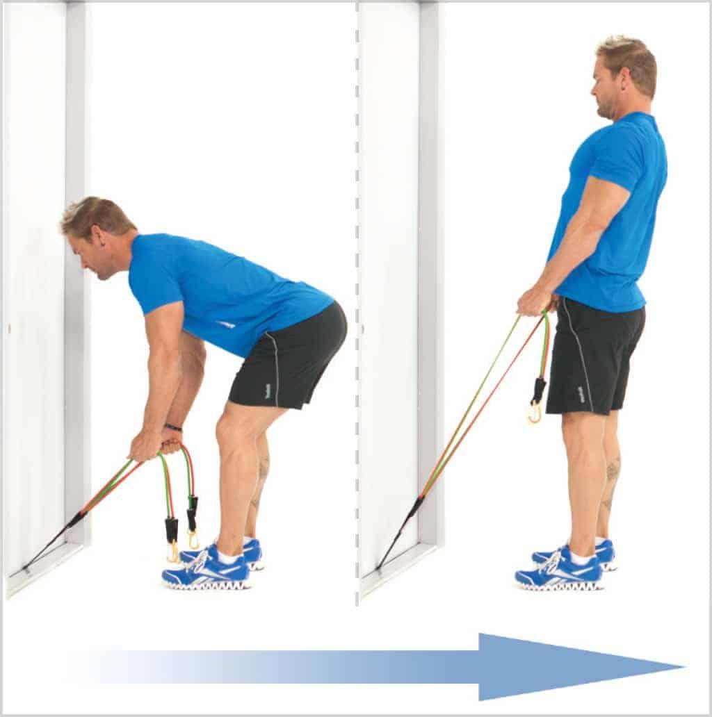 Exercice musculation dos - Relevé de buste