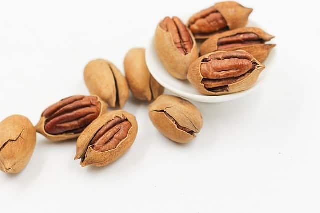 protéines végétales noix