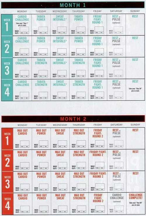 exercise schedule insanity max:30