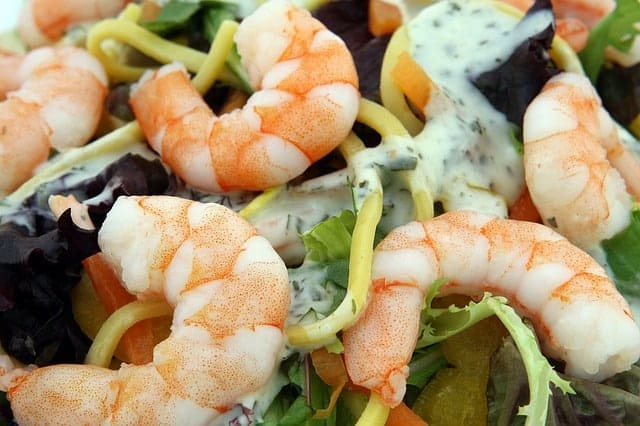 combien de proteine par jour - crevettes
