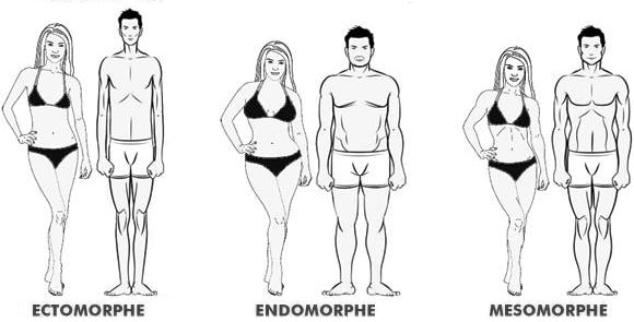 Déterminez votre type de morphologie