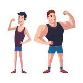 Travailler les biceps pour la prise de masse