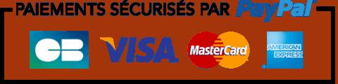 paiement sécurisé PayPal Stripe