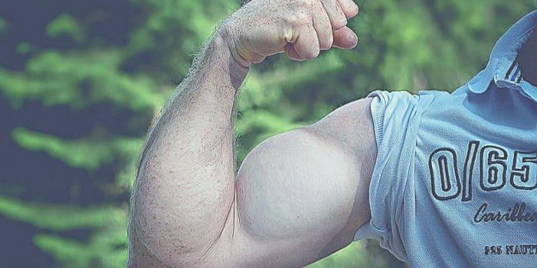 6 exercices biceps pour prendre du volume