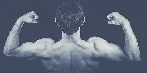 6 exercices de musculation des bras sans matériel