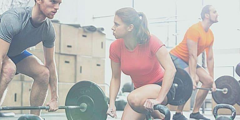 Comment trouver un bon programme de musculation gratuit en 2020