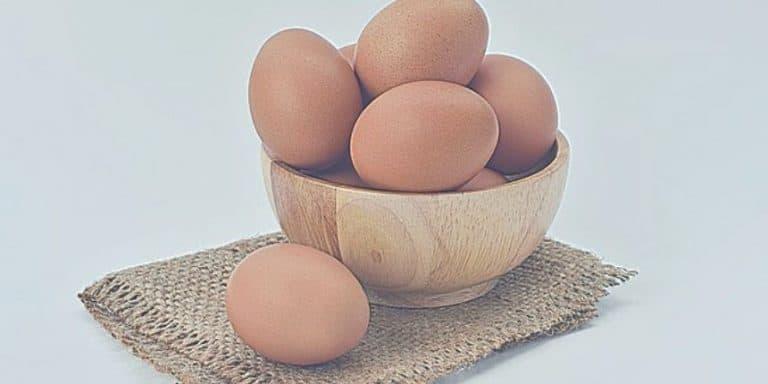 Protéine d'œuf pour brûler les graisses et prendre du muscle en 2020