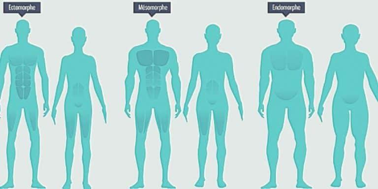 Connaître son type de morphologie pour avoir enfin des résultats