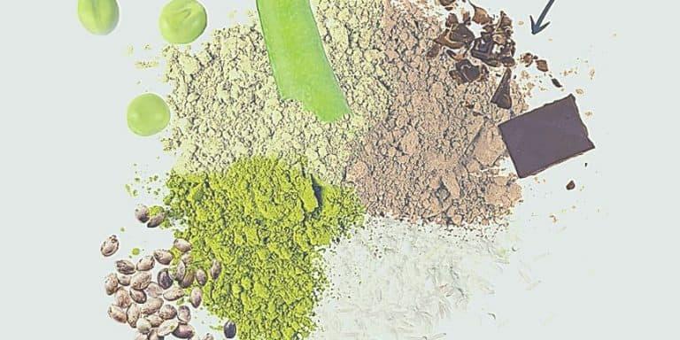 Protéine végétale musculation en poudre pas cher