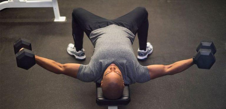 exercices pectoraux avec haltères