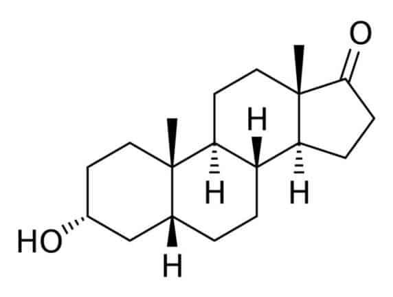 structure de la testostérone